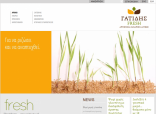 Website Gatidis - Home